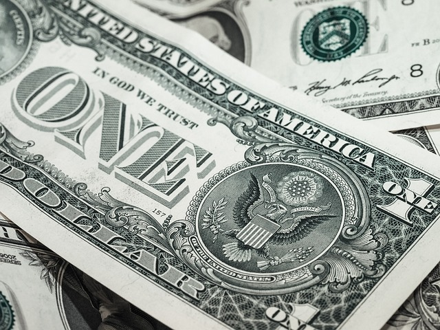 海外のお金(1ドル札)