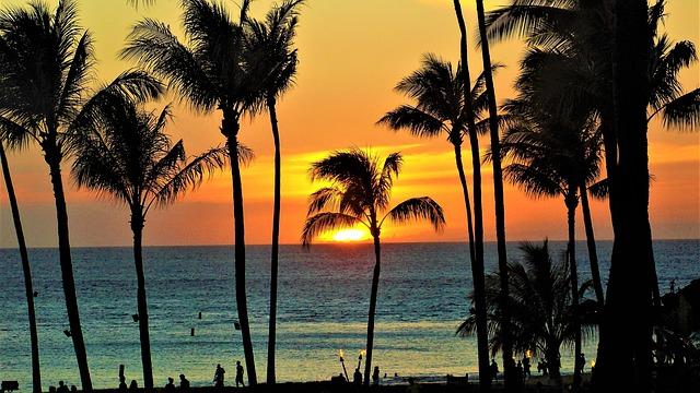 夕日の見える南国の海岸